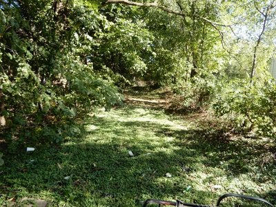 Residential Lots & Land For Sale: 7021 South Hermitage Avenue