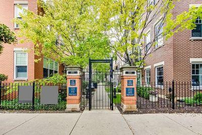 Condo/Townhouse For Sale: 220 West Scott Street #E