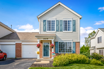 Minooka, Channahon Condo/Townhouse For Sale: 1509 Kettleson Drive
