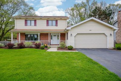 Naperville Single Family Home For Sale: 1501 Meisch Court