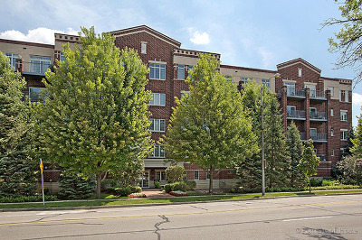 Downers Grove Condo/Townhouse New: 5329 Main Street #206