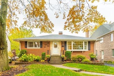 Elmhurst Single Family Home New: 782 South Poplar Avenue