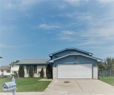 Romeoville Single Family Home New: 942 Princeton Avenue