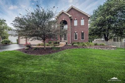 Oswego Single Family Home For Sale: 345 Prairieview Drive