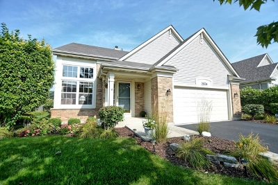 Plainfield Single Family Home For Sale: 21538 West Larch Drive