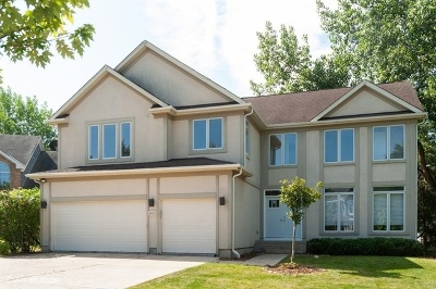 Vernon Hills Single Family Home For Sale: 1035 Pine Grove Court