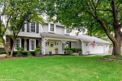 Naperville Single Family Home New: 1841 Princeton Circle