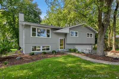 Naperville Single Family Home New: 10220 Sunridge Drive