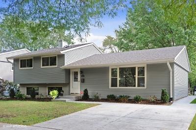 Buffalo Grove Single Family Home For Sale: 317 Cottonwood Road