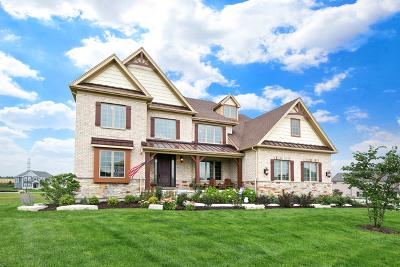 Naperville Single Family Home New: 4447 Sassafras Lane