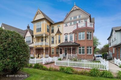 Naperville Condo/Townhouse New: 4145 Royal Mews Circle