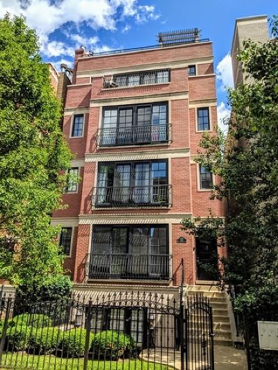 Condo/Townhouse New: 3721 North Wilton Avenue #4