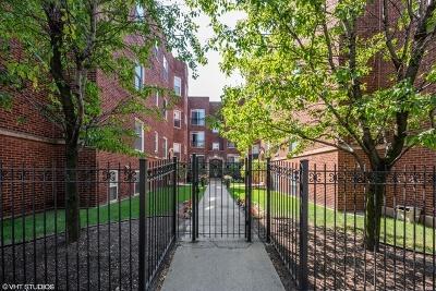 Condo/Townhouse New: 5878 North Ridge Avenue #1