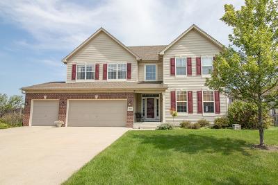 Plainfield Single Family Home New: 1604 Whisper Glen Drive