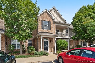 Joliet Condo/Townhouse New: 4455 Timber Ridge Court #4455