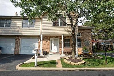 Alsip Condo/Townhouse Re-Activated: 4320 West Emerald Way Street