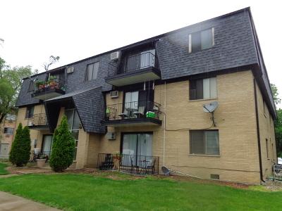Alsip Condo/Townhouse New: 4840 West Engle Road #3NE