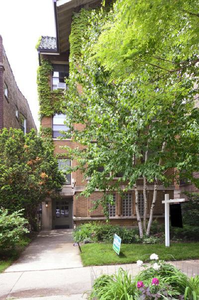 Condo/Townhouse New: 612 Michigan Avenue #3