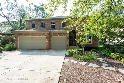 Wheaton Single Family Home For Sale: 718 Wakeman Avenue