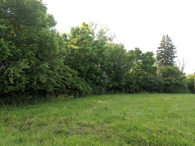 New Lenox Residential Lots & Land For Sale: 1329 North Cedar Road