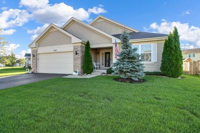 Pingree Grove Single Family Home New: 1069 Birchwood Drive