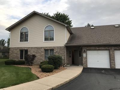 Joliet Single Family Home New: 2620 Crescenzo Drive