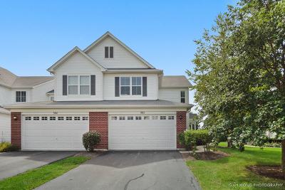 Oswego Condo/Townhouse New: 382 Chesapeake Lane #33-382C