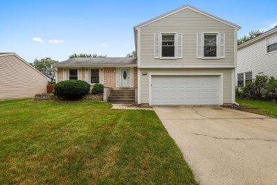 Vernon Hills Single Family Home New: 304 Spring Lane