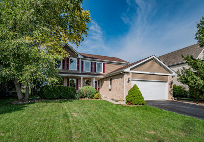 Plainfield Single Family Home For Sale: 12320 Heritage Meadows Drive