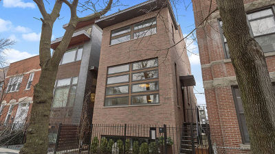 Chicago Single Family Home New: 519 North Wood Street