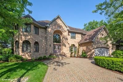 Burr Ridge Single Family Home New: 9040 Enclave Drive