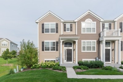 Pingree Grove Condo/Townhouse New: 1682 Ruby Drive