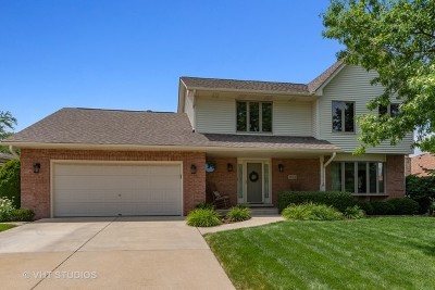 Mokena Single Family Home For Sale: 19312 South Schoolhouse Road