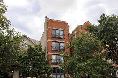 Condo/Townhouse New: 3217 North Wilton Avenue #4