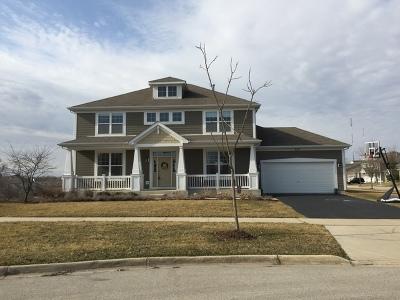 Elgin Single Family Home New: 265 Tumbleweed Way
