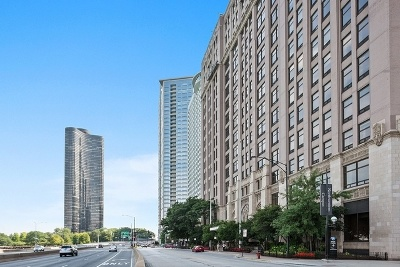 Chicago Condo/Townhouse New: 680 North Lake Shore Drive #705