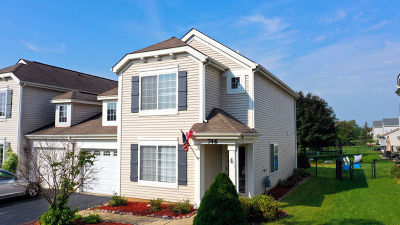 Round Lake Condo/Townhouse For Sale: 746 South Providence Lane