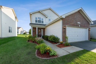 Round Lake Condo/Townhouse For Sale: 209 West Norwell Lane