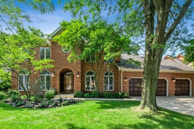 Naperville Single Family Home For Sale: 4005 Broadmoor Circle