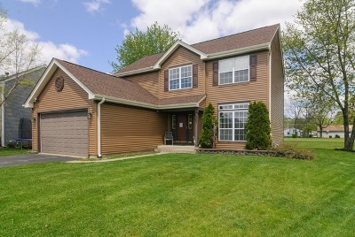 Oswego Single Family Home New: 216 Angela Circle