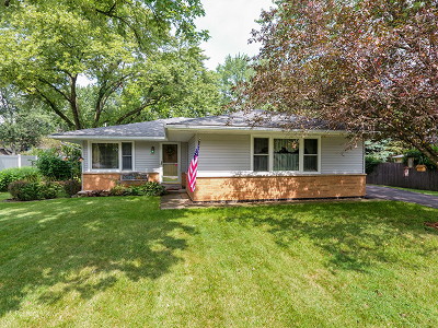 Lisle Single Family Home New: 578 Maple Avenue