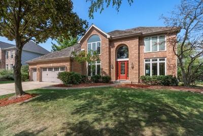 Wheaton Single Family Home For Sale: 7 Marywood Trail