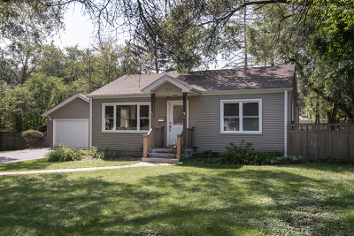 Downers Grove Single Family Home New: 4400 Stonewall Avenue