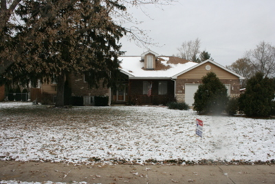 Mokena Single Family Home New: 11502 195th Street