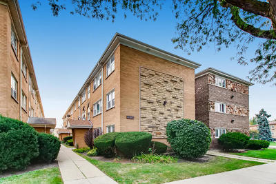 Condo/Townhouse New: 4826 North Linder Avenue #1A
