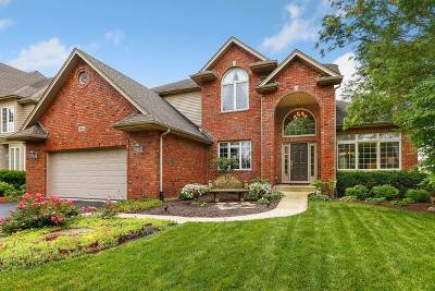 Naperville Single Family Home New: 3444 Lapp Lane