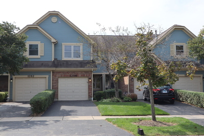 Naperville Condo/Townhouse For Sale: 1284 Rhodes Lane
