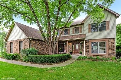Crystal Lake Single Family Home For Sale: 6106 Raintree Drive