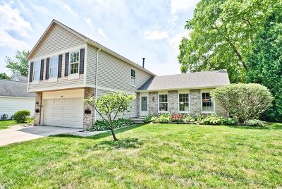Buffalo Grove Single Family Home New: 1008 Hobson Drive