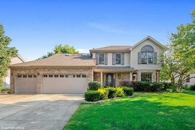 Plainfield Single Family Home New: 25029 Vermette Road